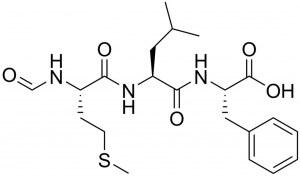 Service à façon : Synthèse de peptide